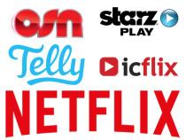 Netflix MENA: What Lies Ahead